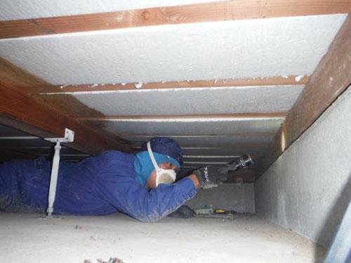 床下調査1