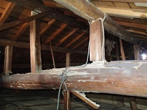 2階小屋裏の梁 イエシロアリによる被害